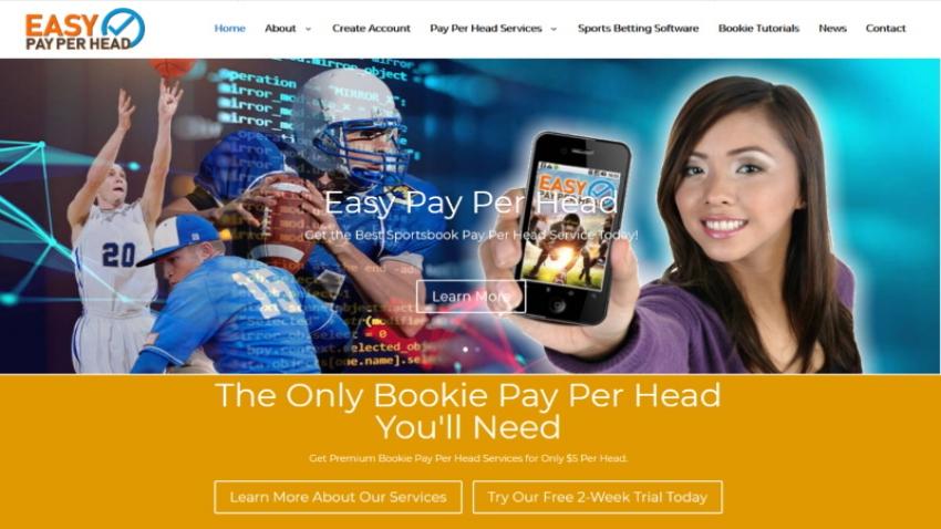 EasyPayPerHead.com Review