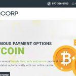 RDGCorp.com Pay Per Head Review