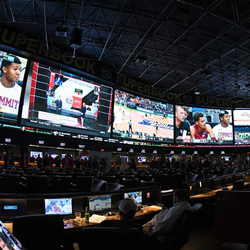 Colorado Sports Betting Gets Millions in Wagers